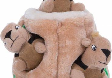 Outward Hound Kyjen 31001 Hide A Squirrel Plush Dog Toy
