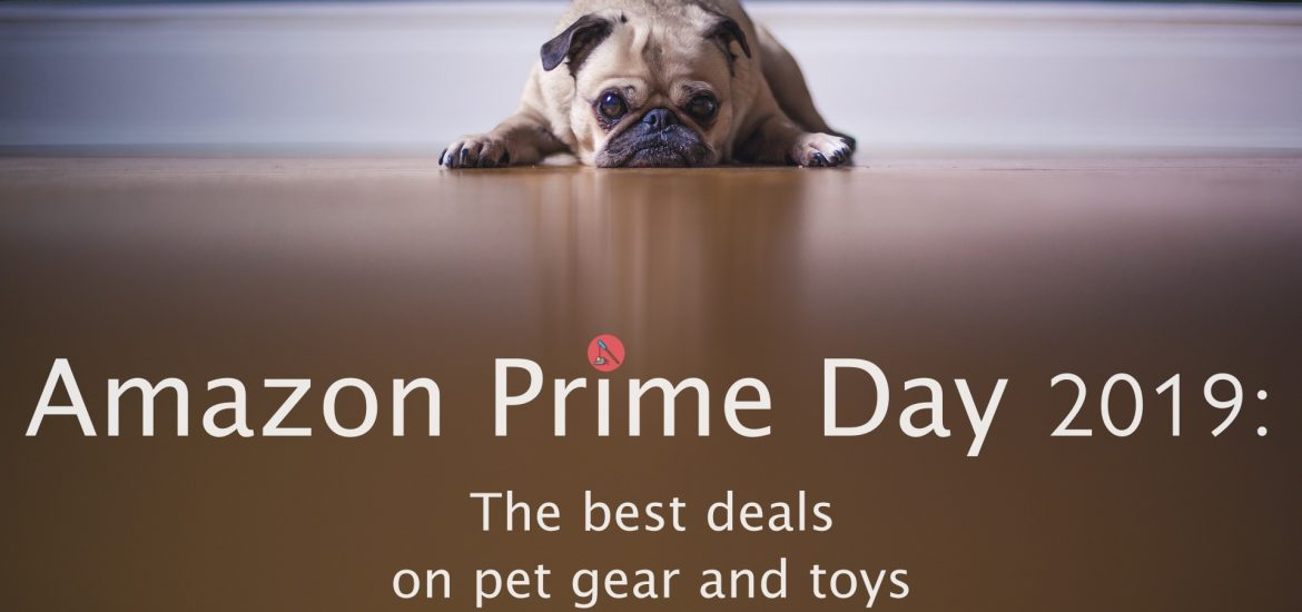 amazon prime day featured
