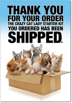 cat lady starter kit birthday card
