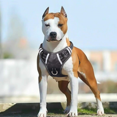 Big Dog Harness No Pull Adjustable Pet