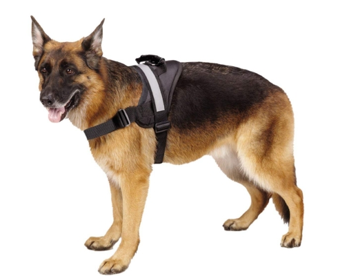 EXPAWLORER Big Dog Harness Soft Reflective No Pull Vest for Medium to Large Dogs
