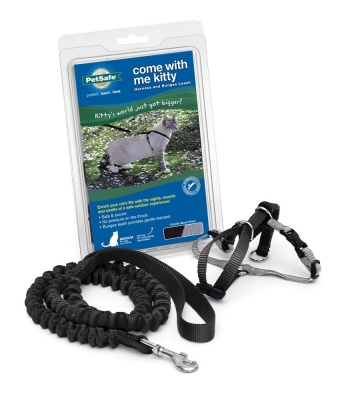 PetSafe Come with Me Kitty Harness and Bungee Leash, Harness for Cats