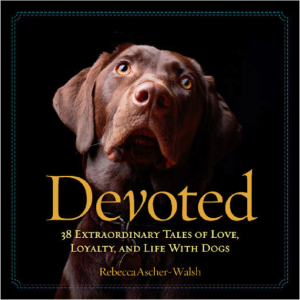 Devoted 38 Extraordinary Tales of Love Loyalty and Life With Dogs book
