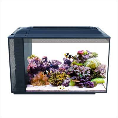 Fluval Aquarium Kit
