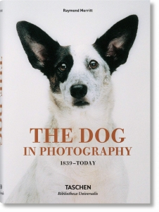 The Dog in Photography 1839–Today Book