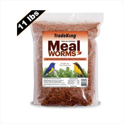 TradeKing Dried Mealworms