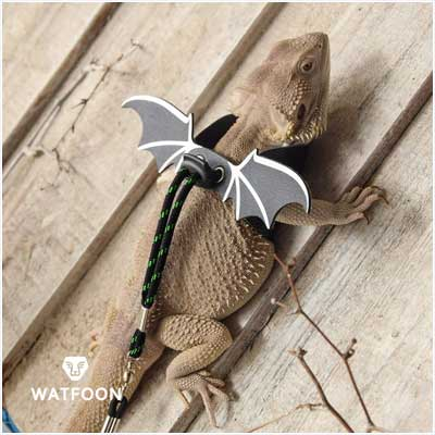WATFOON Adjustable Lizard Leash