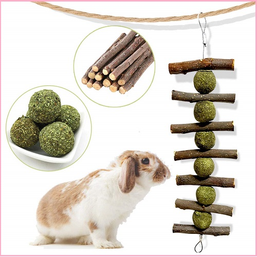 Bunny Chew Toy with Natural Organic Apple Sticks
