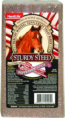 Evolved Sturdy Steed Horse Block Peppermint