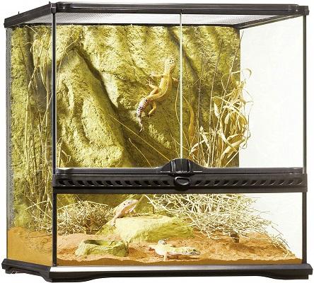 Exo Terra All Glass Terrarium