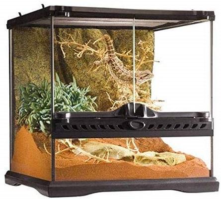 Exo Terra Glass Reptile Terrarium