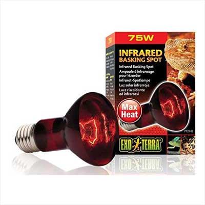 Exo Terra Infrared Basking Spot Lamp