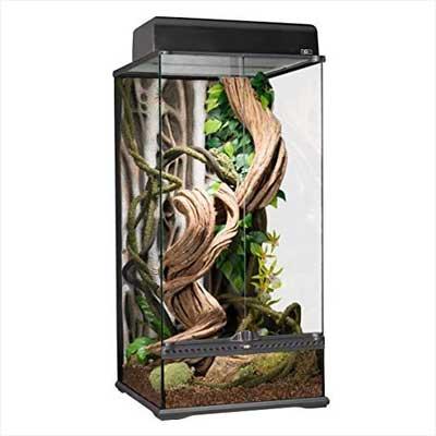Exo Terra Natural Glass Terrarium X-Tall