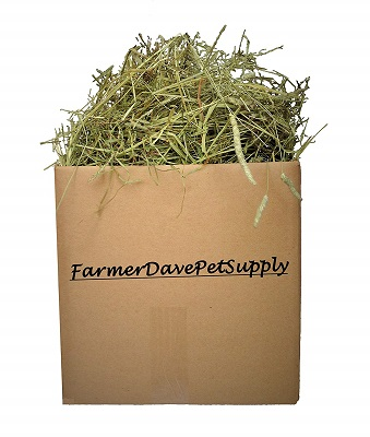 FarmerDavePetSupply 3lb First Cut Timothy Hay