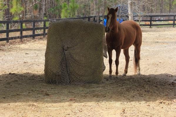 Freedom Feeder Round Bale Hay Net