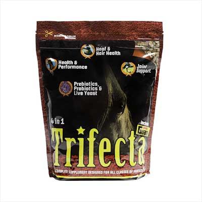 Horse Guard Trifecta Horse Supplement