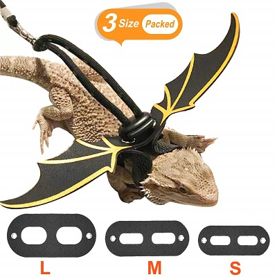 Kudes Adjustable Bearded Dragon Leather Harness Leash