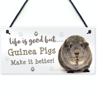 RED OCEAN Guinea Pig Sign