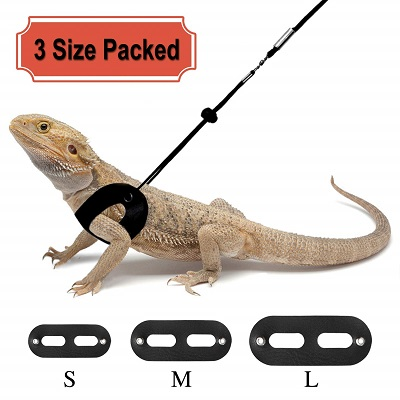 Rypet 3 Packs Bearded Dragon Harness and Leash