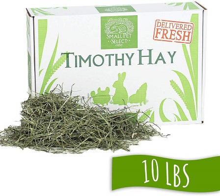 Small Pet Select Perfect Blend Timothy Hay