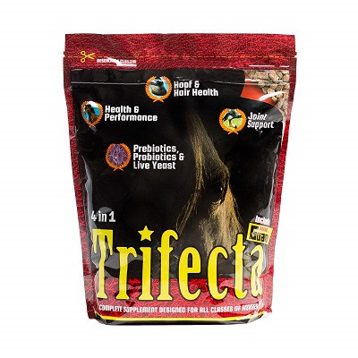 Trifecta by Horse Guard