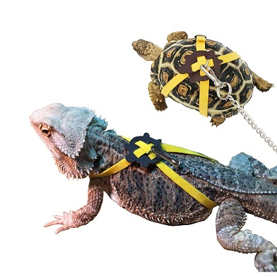 Vehomy Turtle Lizard Harness Leash