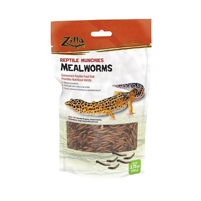 Zilla Munches Mealworms
