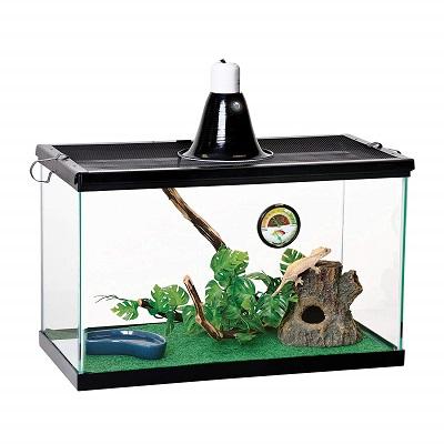 Zilla Reptile Starter Kit