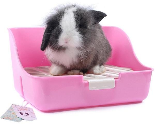 best litter boxes rabbits