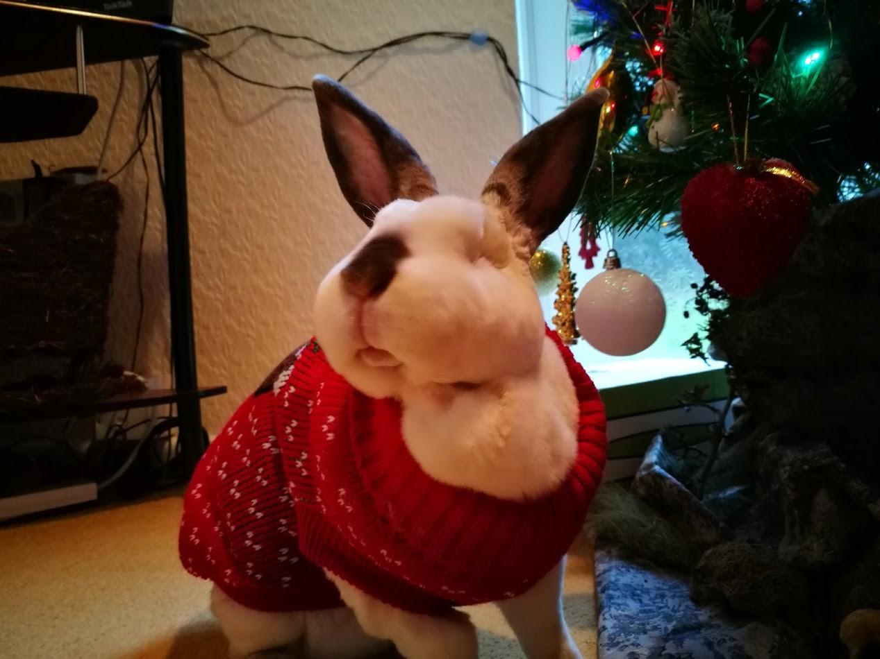 Cute bunny beside Christmas tree