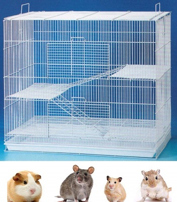 Three Level Small Animal Cage